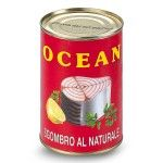 Mackerel Ocean 400g peso sgocciolato 295g Icat