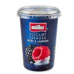 Yogurt con frutta in pezzi more e lamponi 500g Muller