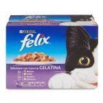 Felix multipack 10x100g gusti assortiti in gelatina