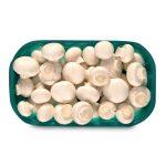 Funghi champignon sgambato kg.1 Monalfungo