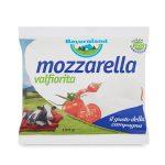 Mozzarella Valfiorita 100g Bayernland