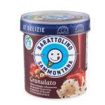 Barattolino gelato Le Delizie granulato 500g Sammontana