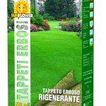 Semi per tappeto erboso rigenerante 1kg Sunflower